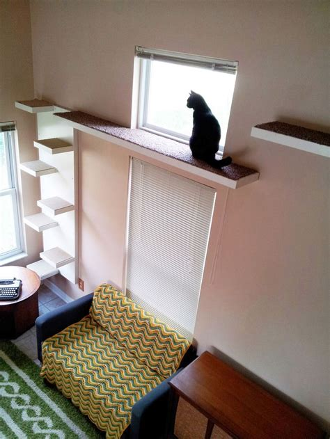 cat wall shelves best 25 cat walkway ideas on cat playground cat throwing up and cat houses