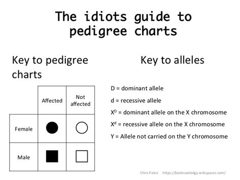 Pedigree Chart Worksheet by Pedigree Chart Worksheet