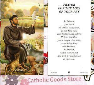 st francis  assisi prayer   loss   pet