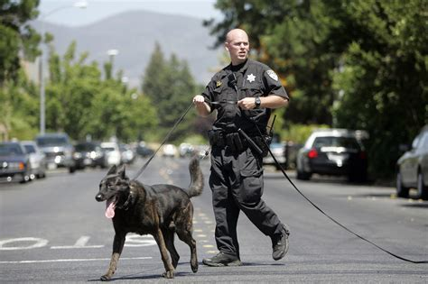 K9 Officer by K9 Unit Napa Department