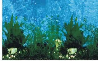Background Aquarium   Background Desktops Pics