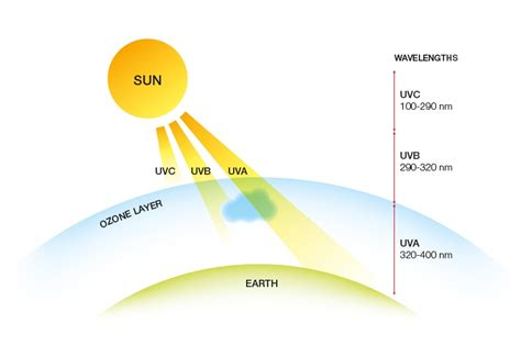 Uvb Ls by Do You The Difference Between Uv Rays