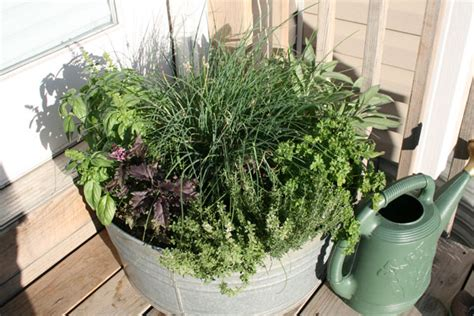 herb garden containers container herb garden image search results