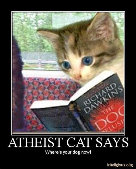 Atheist Meme - funny atheist cat the dog delusion joke meme picture