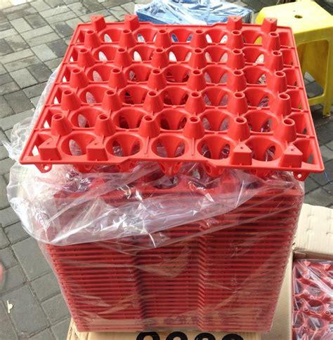 jual tray tempat telur peternak ayam chicken egg plastik