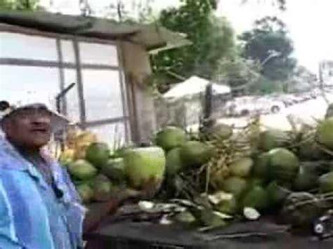 Jual Batok Kelapa Sawit mesin pengupas sabut kelapa doovi