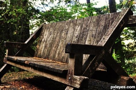 bench in forest forest bench park benches pinterest