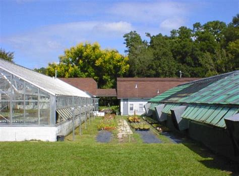 greenhouses in florida greenhouses radio road architecture of the