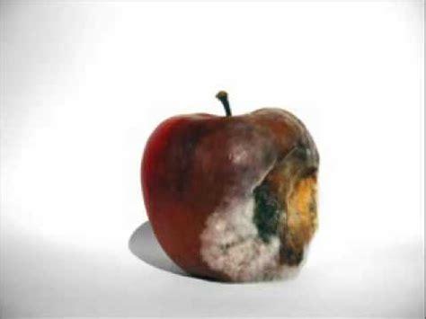 manzana en descomposicion youtube