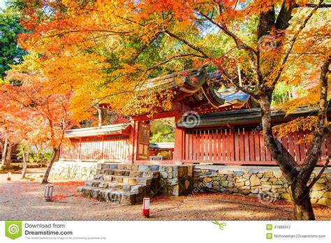 november tokyo nice maple season japan stock photo image 41886912