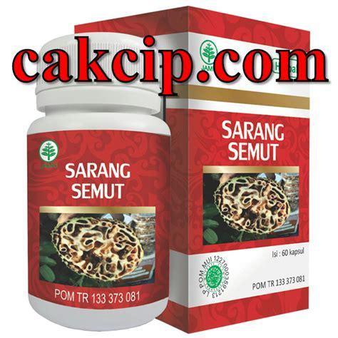 Obat Kanker Tumor Terbaru Hiu Sarang Semut sarang semut hiu surabaya jual agen grosir herbal