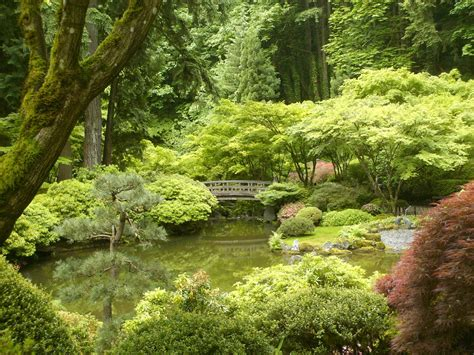 japanese zen garden the gallery for gt zen garden photography