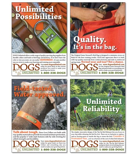 dogs unlimited dogs unlimited on aiga member gallery