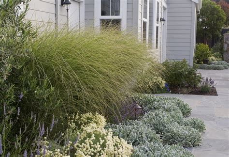 Shade L by Grass Garden Ideas With Grass L Andscape Traditional And