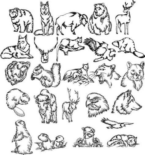 imagenes animales salvajes para imprimir animalessalvajes dibujo de animales salvajes para imprimir