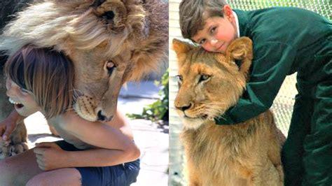 imagenes de animales y personas 5 ni 241 os que fueron criados por animales youtube