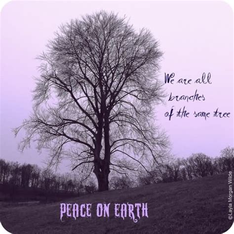 tree sayings phrases 60 best tree quotes sayings