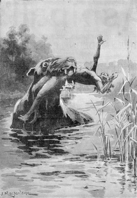true stories of monstrous creatures our darkest history and lore books bunyip an ocker shocker undead backbrain