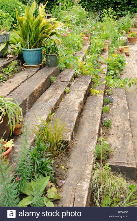 Wooden Garden Sleepers by Garden Wooden Sleeper Terrace And Steps Planted Up With