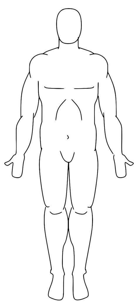 anatomical position diagram anatomy regions diagram anatomy free engine image