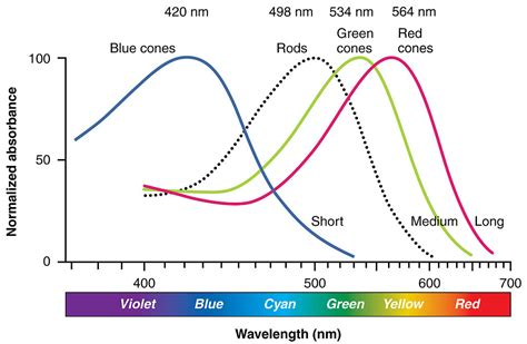 difference between and blue light vs blue light