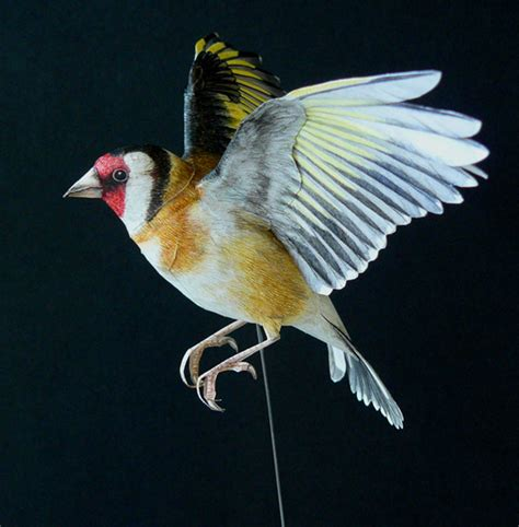 Birds With Paper - i create realistic birds from paper bored panda