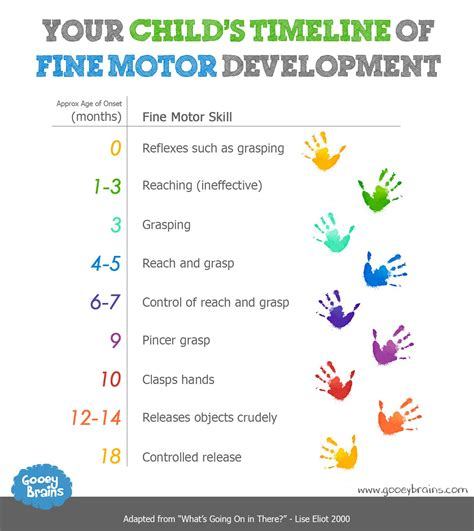 motor skills in child development motor skills 101 what to expect and