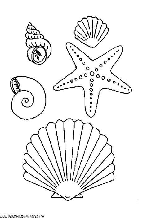imagenes variados para pin dibujos para colorear de animales acuaticos animales marinos