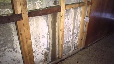 basement mold prevention mission restorations