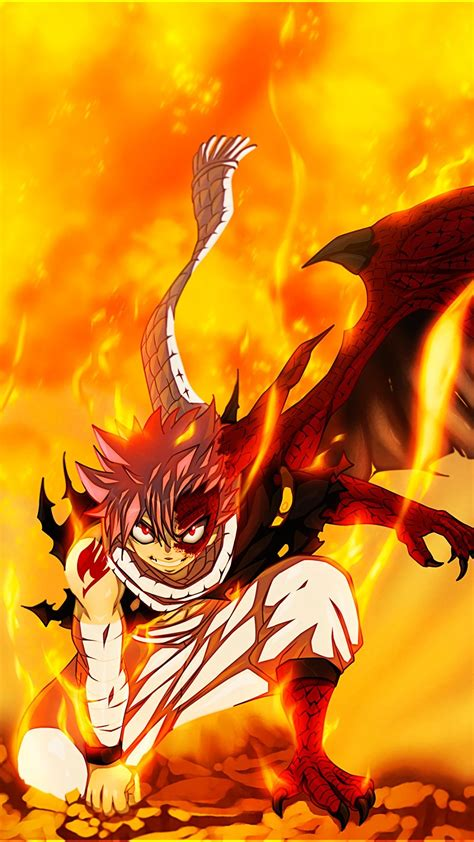 cool dragon wallpapers  background pictures