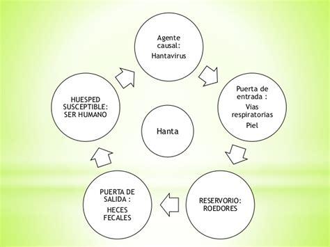 cadena epidemiologica lepra cadenas epidemiologicas