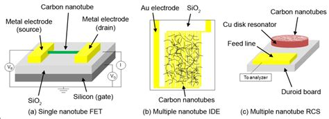 transistor back gate effect defected and substitutionally doped nanotubes applications in biosystems sensors