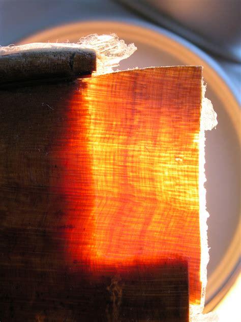 holzmaserung erkennen originalholz transplantation