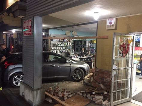 cops man who crashed into santa rosa pet store high on