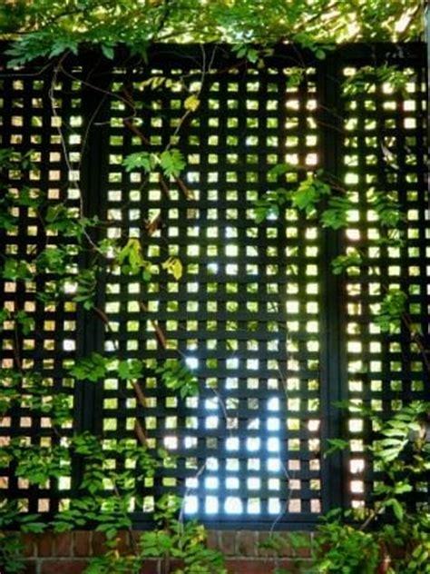 15 helpful design tips for vertical gardens