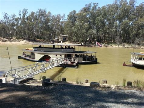 paddle boats canberra ps canberra picture of murray river paddlesteamers ps