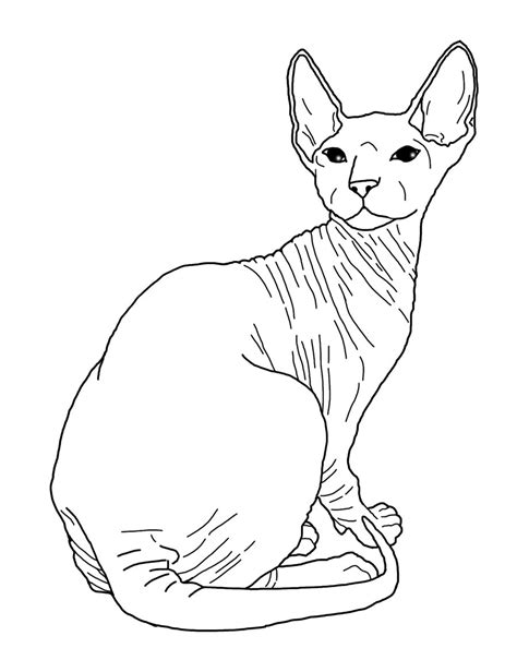 hairless cat coloring page sphynx base 1 by vire dragon on deviantart