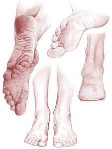 paintings or drawings of feet on pinterest study sketch