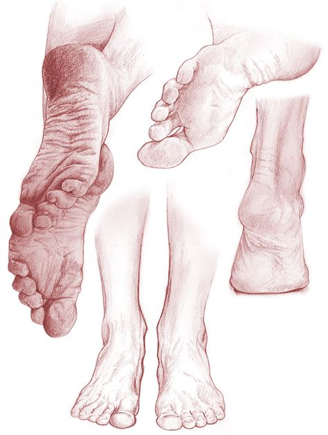 what is the inn color for toes for spring paintings or drawings of feet on pinterest study sketch