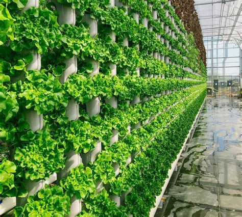 vertical farming company selling produce grown  cleburne