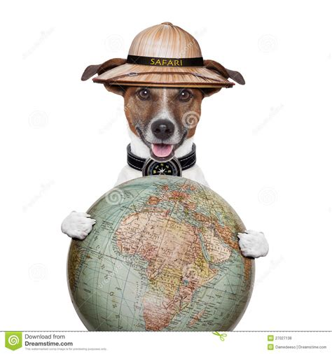 puppy travelers travel globe compass safari explorer royalty free stock photos image 27027138