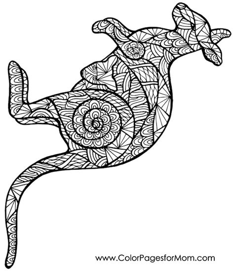 aboriginal patterns coloring pages kangaroo coloring page adult colouring animals