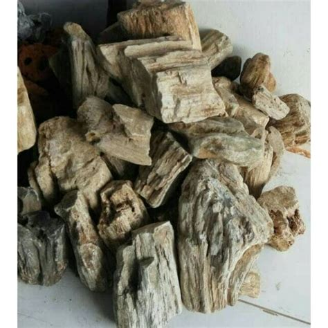 jual batu fosil aquascape kg  kg hardscape hiasan