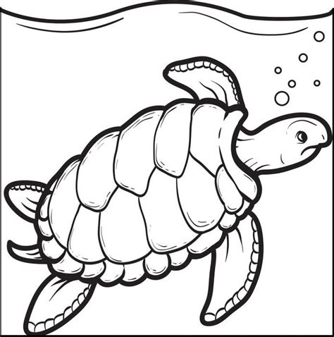 printable coloring pages turtles swimming turtle coloring page turtle printable coloring