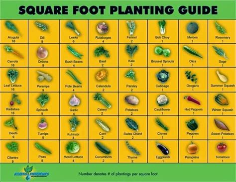 square foot gardening template a gardening notebook thehomesteadingboards