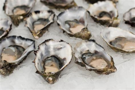 alimenti zinco alimenti ricchi di zinco tabella e valori nei cibi