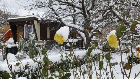 Garten Pflanzen Januar by Ziergarten Arbeiten Im Dezember Und Januar