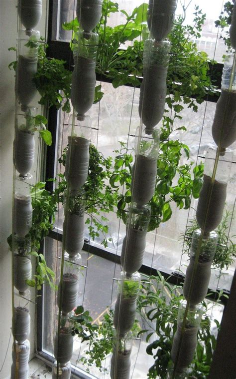 Bottle Vertical Garden Build A Vertical Garden From Recycled Soda Bottles Diy