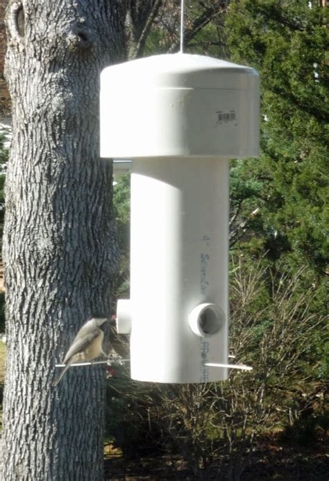 Pvc Bird Feeders grant maclaren s squirrel proof bird feeder