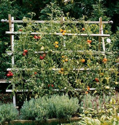 Potager En Carrãģäģ S Support Pour Les Tomates Potager En Carr 233 S